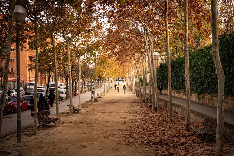 Barcelona Autumn colors