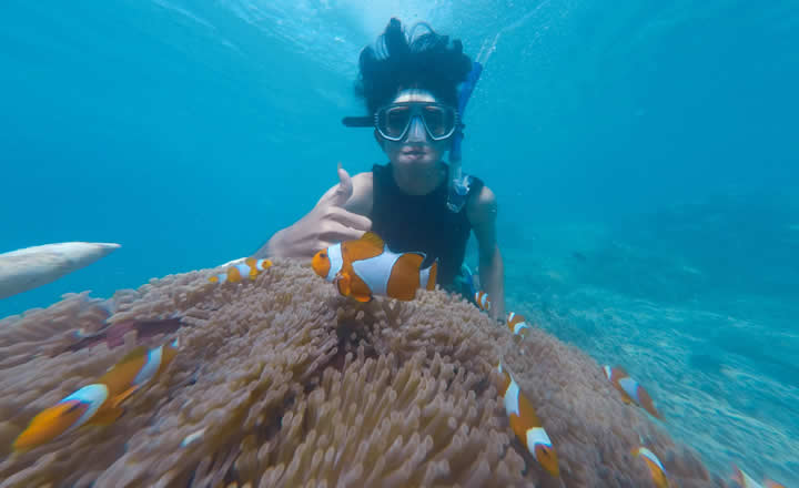 Snorkeling trip dubai