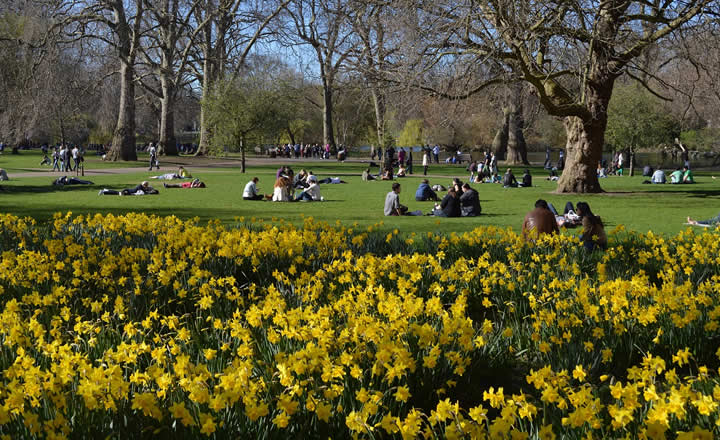 St James Park London in Sring May