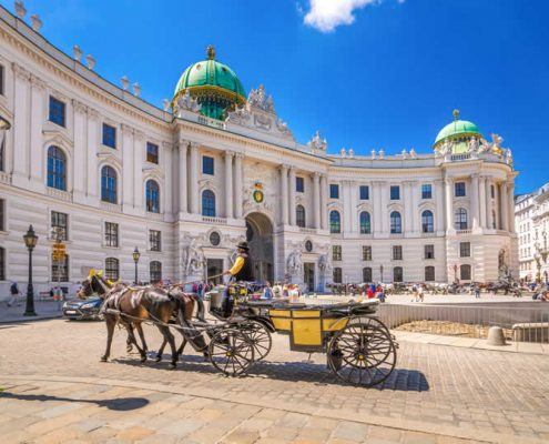 Vienna Hofburg horse carriage